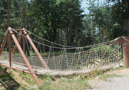 rope bridge: A rope bridge in the thick forest