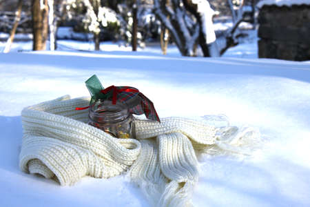 Winter picture with Christmas cookies in a jar on a scarf in the snow