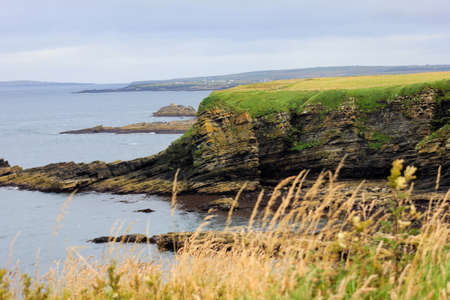 plateau point: Dunnet Head Scotland UK shoreline with cliffs covered in green and dried grass late afternoon on cloudy day