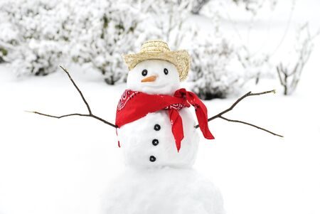 frosty the snowman: A cute little snowman wearing a cowboy hat and bandana