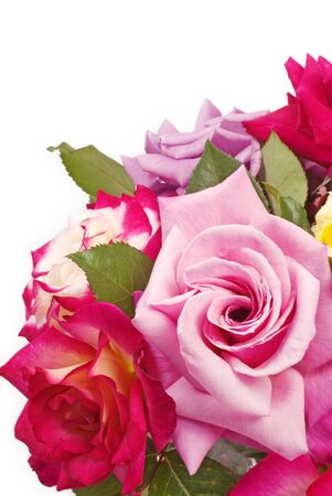 A bouquet of fresh garden roses in a variety of colors, isolated on white background with copy space