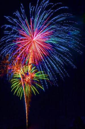fuegos artificiales: Una exhibici�n de fuegos artificiales colorido, vertical con espacio negro de fondo y copia Foto de archivo
