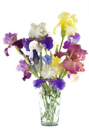 A crystal vase full of cut multicolored Hybrid Bearded Irises, vertical with copy space