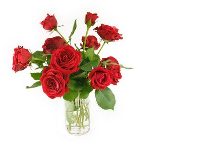A vase of beautiful red roses with white horizontal background with copy space