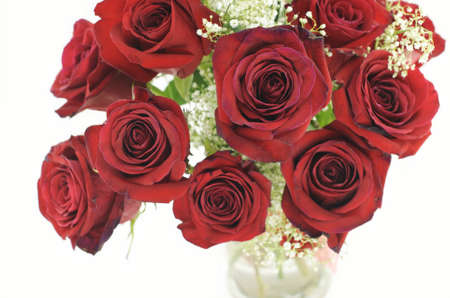 A bouquet of bright red roses in a vase on a white background with selective focus on front roses photo