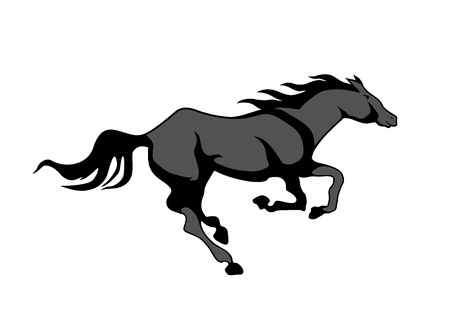 horse, black and white picture isolated