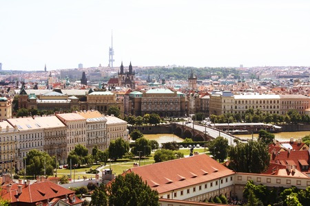 praha: Houses with traditional red roofs in Prague. Prague (Praha) is capital and largest city of Czech Republic