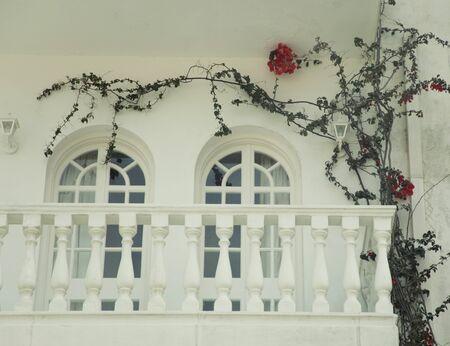 zakynthos: house and window with flowers on Zakynthos island, Greece