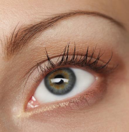 maquillage: Macro image of human eye. Young Woman. Stock Photo