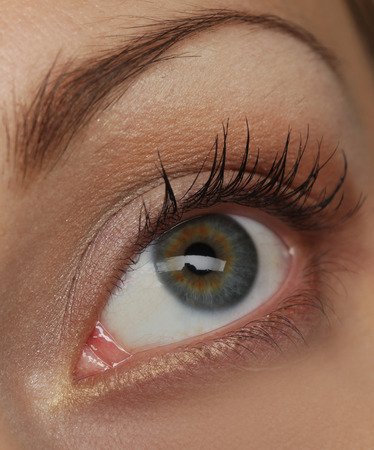 macro image: Macro image of human eye. Young Woman. Stock Photo