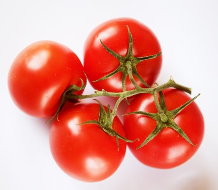 Red tomatoes on a green twig