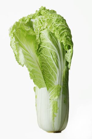 Chinese cabbage on white background close up
