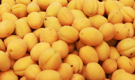 apricots for sale in a store,