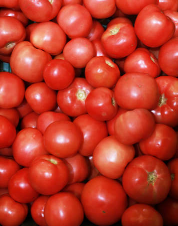 Ripe tasty red tomatoes at baazar.