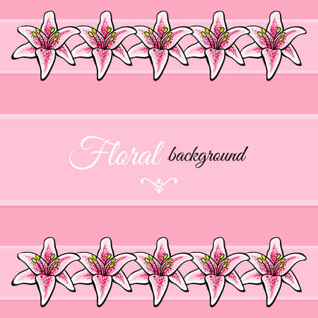 pink lily: Hand-drawn pink lily on the pink background.