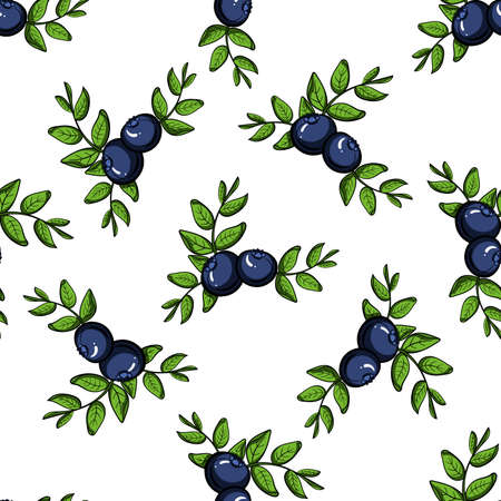 blueberries: Pattern made from hand drawn branches of blueberries.