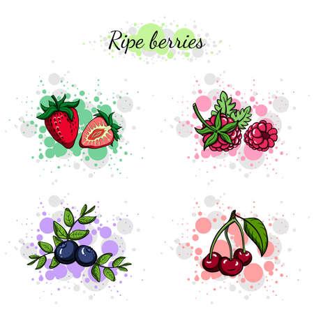 Set of hand drawn colorful berries.  Çizim