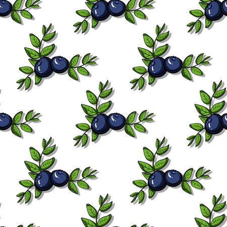 bilberry: Pattern made from hand drawn branches of blueberries.