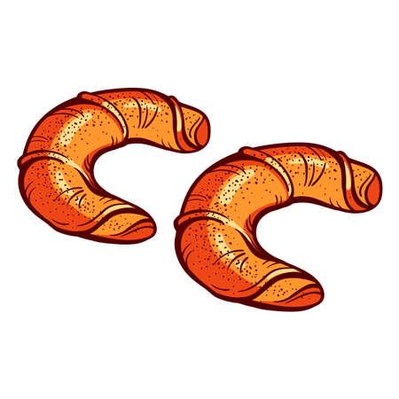 bagels: Hand drawn bagels on the white background. Vector illustration. Illustration