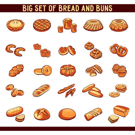 buns: Big set of  bread and buns on white background. illustration.