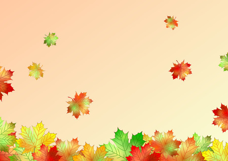 pile of leaves: autumn maple leaves made in illustrator cs4