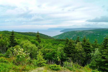 Cape Briton Nova Scotia Canada looking at ocean