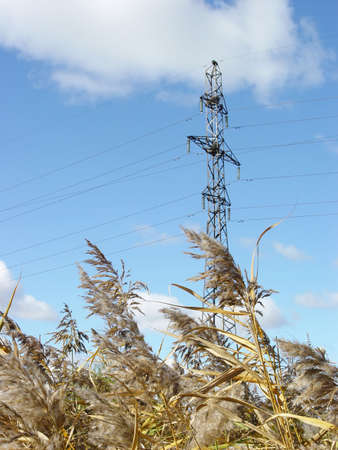 electric column with blue sky and old yellow autumn grass photo