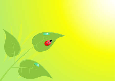spring leaves and ladybug Vector