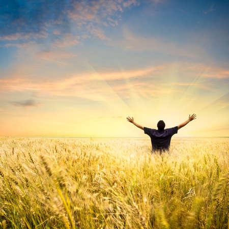 man in tarwe veld joying zonsondergang Stockfoto