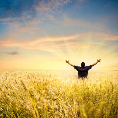 man in wheat field joying sunset Stock Photo