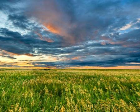 Strom: dark clouds on sunset above field Stock Photo
