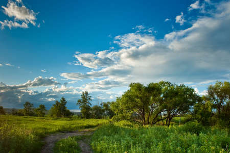 composure: evening summer landscape with blue skies