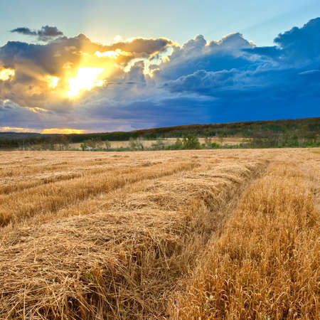 autumn landscape with field and sun rays trough the clouds Stock Photo - 6230854