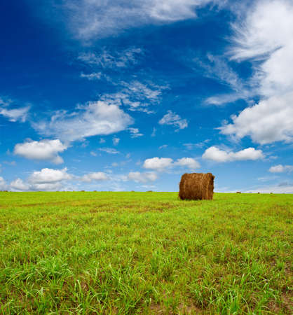 green field with hay under blue skies Stock Photo - 6554742