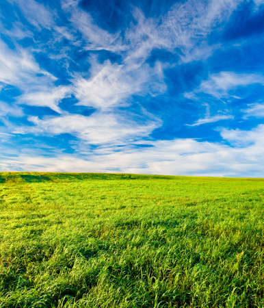 green filed under blue skies with white clouds photo