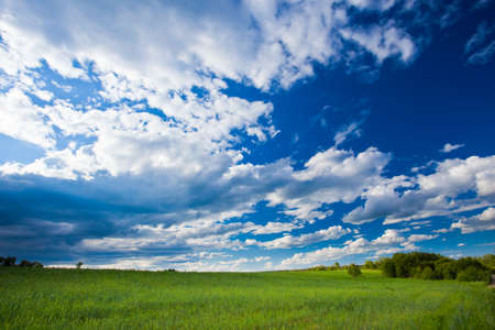 blue skies with clouds above green land photo