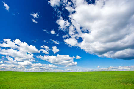 sky clouds: blue skies with clouds above green grass land Stock Photo