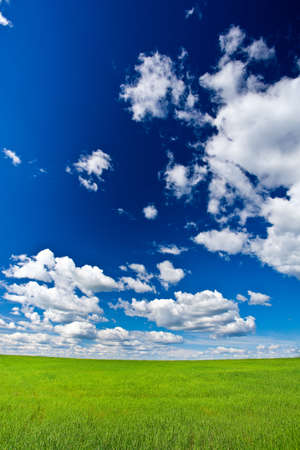 blue skies with white clouds above green land vertical photo