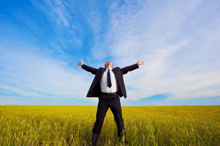 businessman on yellow field under blue skies
