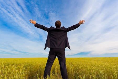 businessman standing on field Stock Photo - 7961863