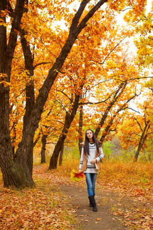 brunette woman walking in autmn park Stock Photo - 11178282