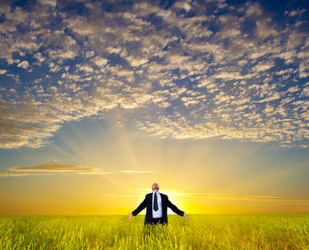 happy businessman relaxing on field before the sunset Stock Photo - 15088780