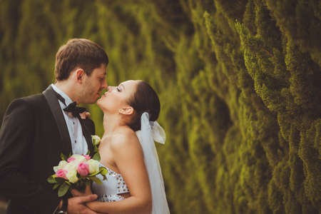 groom and bride: bride and groom outdoors park closeup portrait Stock Photo