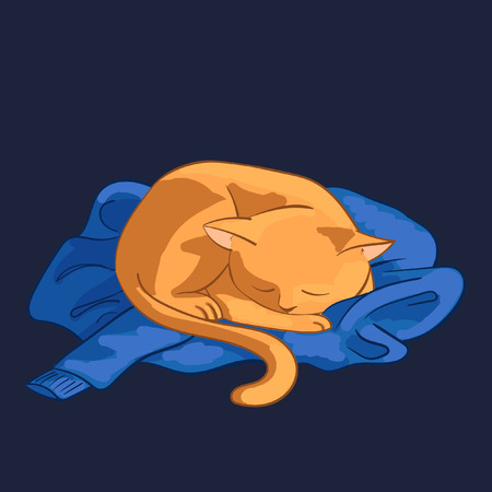 Vector illustration of cat. Red cat sleeping on blue sweater.