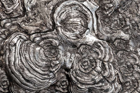 View of the circular texture of the sawn wood