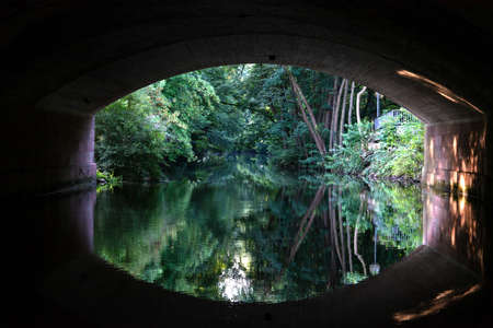 View from under the bridge over the river Pegnitz and the forest in the city of Nuremberg.
