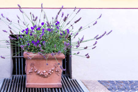 A ceramic pot with beautiful stucco with violets and lavender stands on the sidewalk.