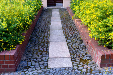 View of the paved path to the house with flower beds of cinquefoil