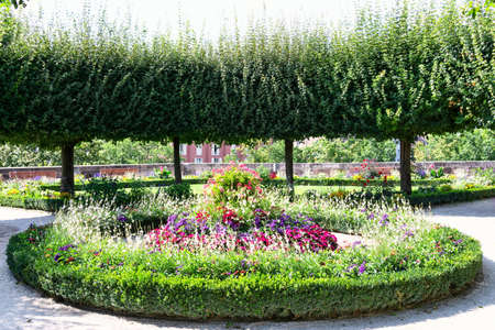View of the blooming flower bed and neatly trimmed trees in the park