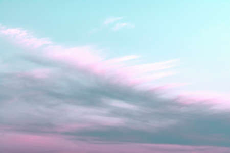 Blue sky with white and pink clouds that form a feather pattern. Concept landscape, abstraction.